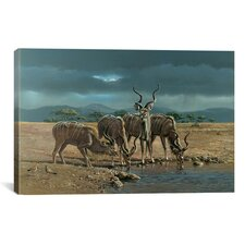 'Greater Kudus' by Harro Maass Painting Print on Canvas