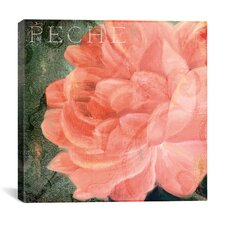 Coleurs Peche from Color Bakery Collection Canvas Wall Art