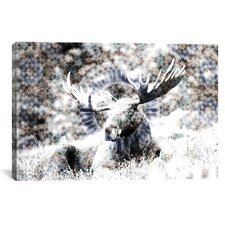 Male Canadian Moose #2 Graphic Art on Canvas