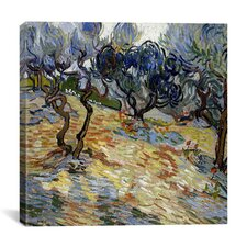 """Olive Trees"" Canvas Wall Art by Vincent van Gogh"