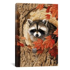 'Raccoon' by William Vanderdasson Painting Print on Canvas