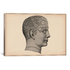 Cartography 'Phrenology Human Head' Graphic Art on Canvas