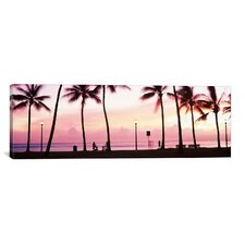 Panoramic 'Palm Trees on the Beach, Waikiki, Oahu, Hawaii' Photographic Print on Canvas