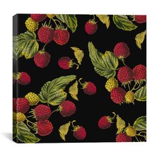 """Nature's Bounty - Raspberries"" Canvas Wall Art by Mindy Sommers"