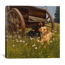 """""""Rest Awhile"""" Canvas Wall Art by Bill Makinson"""
