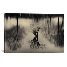 Rhizomes by Geoffrey Ansel Agrons Photographic Print on Canvas