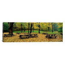 Panoramic Robert Treman State Park, New York State Photographic Print on Canvas