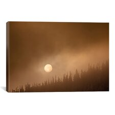 'Wild Moon ll' by Dan Ballard Photographic Print Photographic Print on Canvas