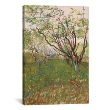 'The Flowering Orchard 1888' by Vincent Van Gogh Painting Print on Canvas