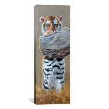 """Tiger Cub Standing up"" Panoramic Canvas Wall by Pip McGarry"
