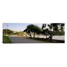 Panoramic California, Oakland, Path Photographic Print on Canvas