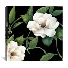 """""""Sweet Magnolias I"""" Canvas Wall Art from Color Bakery"""
