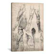 'Sketchbook Studies of Human Legs' by Leonardo da Vinci Painting Print on Canvas