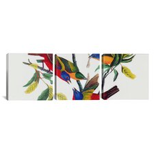 Audubon Painted Bunting John James 3 Piece on Canvas Set