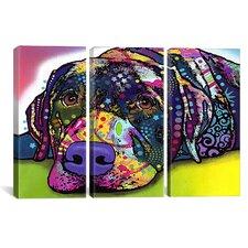 Dean Russo Savvy Labrador 3 Piece on Canvas Set