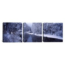Photography Snow-Covered Trees in Yosemite National Park, California 3 Piece on Canvas Set