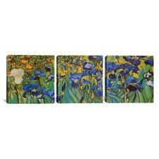 Vincent van Gogh Irises 3 Piece on Canvas Set