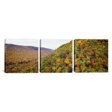 Photography Mountain Forest in Autumn Nova Scotia, Canada 3 Piece on Canvas Set
