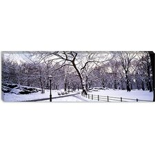 Bare Trees During Winter in a Park Canvas Wall Art