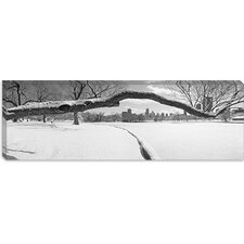 Lincoln Park, Chicago, Illinois Canvas Wall Art