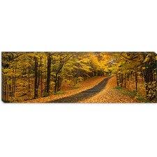 <strong>iCanvasArt</strong> Autumn Road, Emery Park, New York Canvas Wall Art
