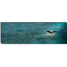 <strong>iCanvasArt</strong> Bird Taking off over Water Canvas Wall Art
