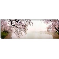 <strong>iCanvasArt</strong> Cherry Blossoms at the Lakeside, Washington, D.C Canvas Wall Art