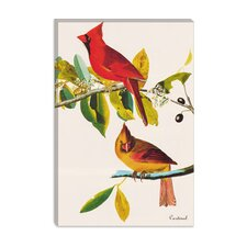 """Cardinal"" Canvas Wall Art by John James Audubon"