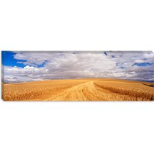 <strong>iCanvasArt</strong> Wheat Field, Washington State Canvas Wall Art