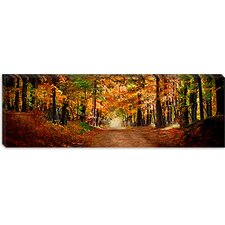 Horse Running Across Road in Fall Colors Canvas Wall Art