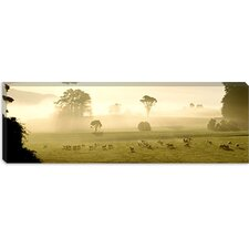 <strong>iCanvasArt</strong> Farmland and Sheep Southland New Zealand Canvas Wall Art