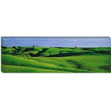<strong>iCanvasArt</strong> Farmland Southland New Zealand Canvas Wall Art