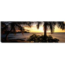 <strong>iCanvasArt</strong> Kohala Coast, Hawaii Canvas Wall Art