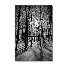 <strong>iCanvasArt</strong> Forest on the Oak Ridges Moraine Canvas Wall Art