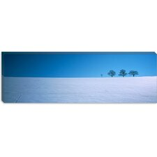 Footprints on a Snow Covered Landscape, St. Peter, Black Forest, Germany Canvas Wall Art