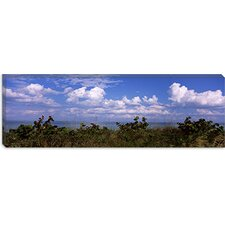 Tampa Bay, Gulf of Mexico, Anna Maria Island, Florida Canvas Wall Art