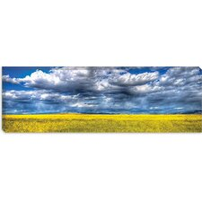 """Yellow and Blue"" Canvas Wall Art by Bob Larson"