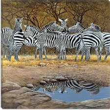 """Zebras"" Canvas Wall Art by Harro Maass"