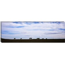 <strong>iCanvasArt</strong> Silhouette of Horses in a Field, Montana Canvas Wall Art