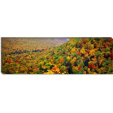 <strong>iCanvasArt</strong> Mountain Forest in Autumn, Nova Scotia, Canada Canvas Wall Art