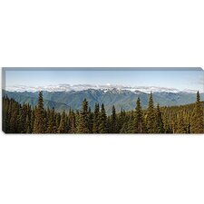 Olympic Mountains, Hurricane Ridge, Olympic National Park Washington State Canvas Wall Art