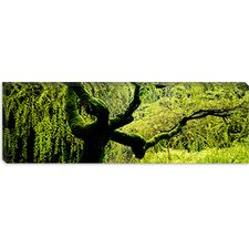 <strong>iCanvasArt</strong> Japanese Garden, Portland, Oregon Canvas Wall Art