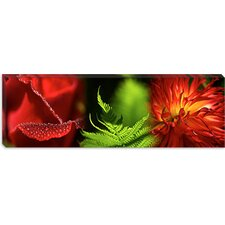 <strong>iCanvasArt</strong> Leaves and Flowers Canvas Wall Art