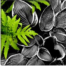 "<strong>iCanvasArt</strong> ""Leaves over Leaves"" Canvas Wall Art by Harold Silverman - Foilage and Greenery"