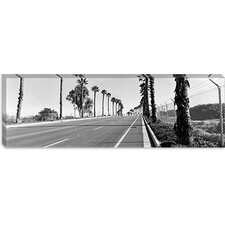 <strong>iCanvasArt</strong> Palm Trees Along a Road, San Diego, California, USA Canvas Wall Art
