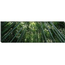 <strong>iCanvasArt</strong> Arashiyama, Honshu, Japan Canvas Wall Art