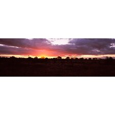 <strong>iCanvasArt</strong> Sunset over the Savannah Plains, Kruger National Park, South Africa Canvas Wall Art