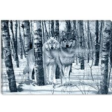 "<strong>iCanvasArt</strong> ""Snow Shadows Silvertones"" Canvas Wall Art by Gordon Semmens"