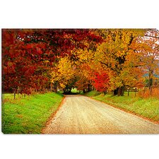 "<strong>iCanvasArt</strong> ""Sparks Lane, TN"" Canvas Wall Art by J.D. McFarlan"