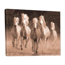 Westward Bound Water Run Outdoor Canvas Wall Decor